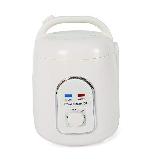 Dampferzeuger Sauna Dampfgenerator, Wangkangyi Mini 1.5L Sauna Bath Dampfer Dampfgerät, 900W Elektrisch Home SPA Steam Generator 220V, für Facial Spa und Körpertherapie