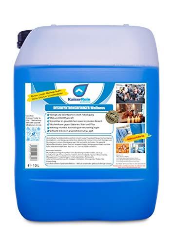 Desinfektionsreiniger Wellness/Spa 10 L Kanister zur...
