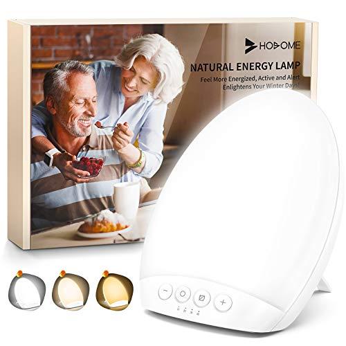 Tageslichtlampe 10000 lux, Hosome 4 Timer Lampe mit Memoryfunktion, 3 Lichtfarben Lichtintensität einstellbar, LED Sonnenlicht, flimmer-, UV-frei