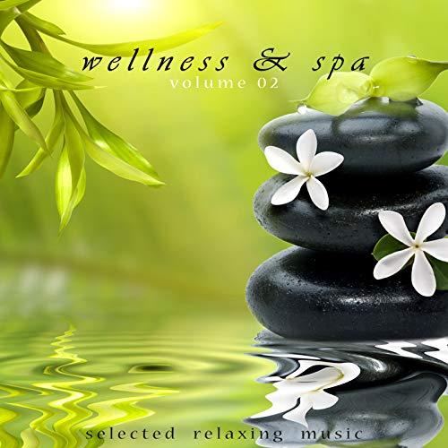 Wellness & Spa Volume 2