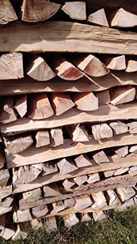 TNNature 30kg getrocknetes Feuerholz | Grillholz | Brennholz aus Buche | Holz aus nachhaltiger deutscher Forstwirtschaft | sofort einsetzbar (25cm)