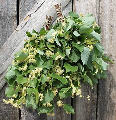 Lindenblüten Reisig für Sauna ca. 40-50cm